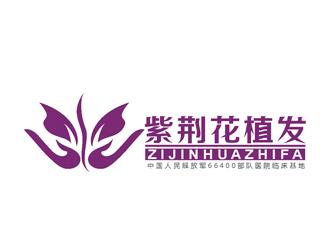 紫荆花植发